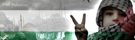 palestine_by_sublea